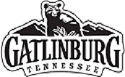 Gatlinburg Convention and Visitors Bureau Logo